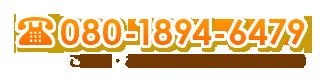 080-1894-6479